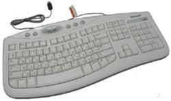 Microsoft Comfort Curve 2000