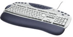 Logitech Internet Navigator Keyboard Y-BE22
