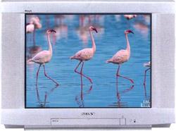 Sony KV-XR29M80