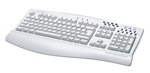 Samsung Internet Keyboard SDM4500P Ergo PS/2