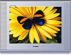 Samsung CS-21K10MHR