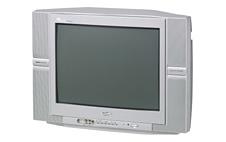 Sanyo CE21KX8 Dynamic Platinum